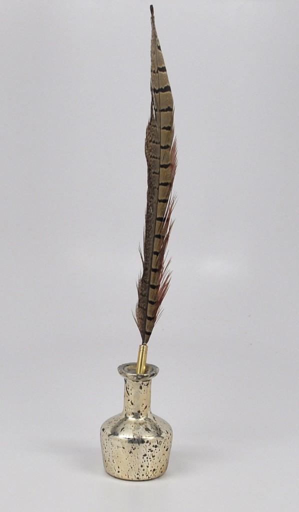 pheasant-quill-pen-web