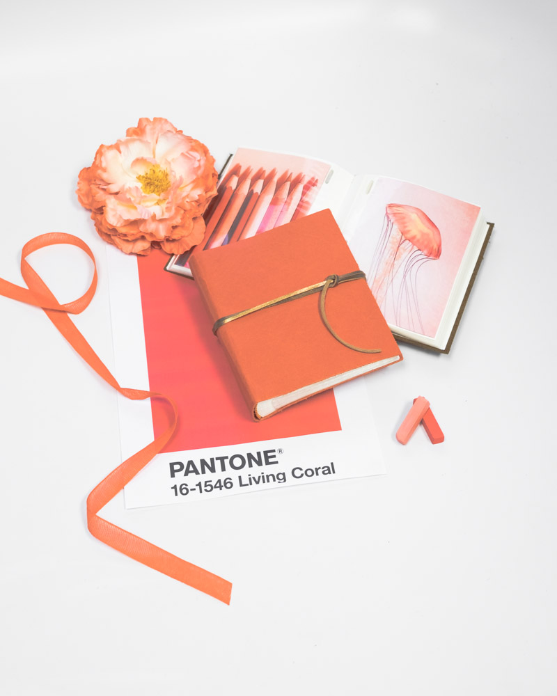 Living-coral_pantones-color-of-the-year_Blue-Sky-Papers