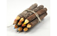 Colored Twig Pencils