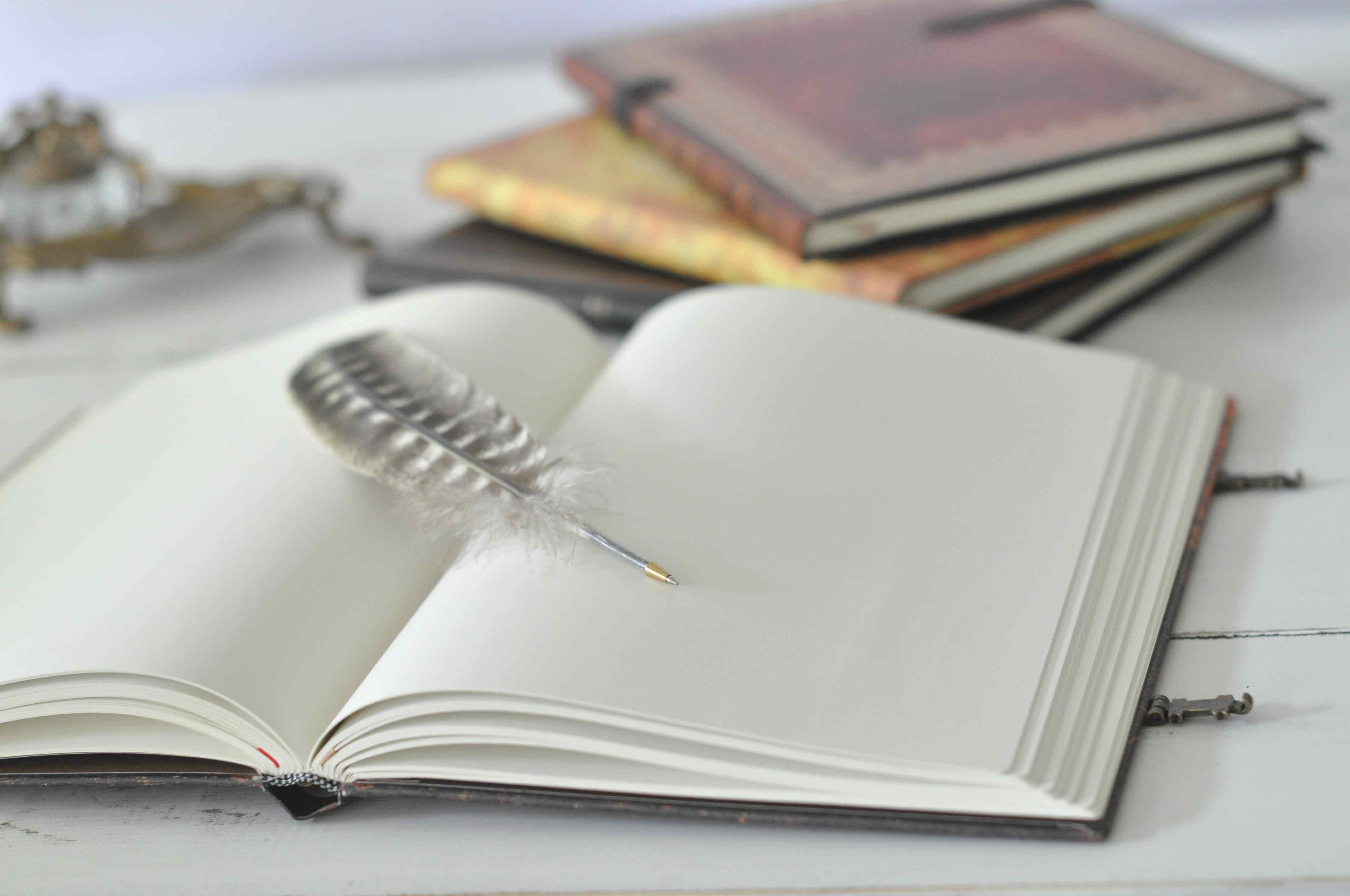 book Absence of Faith